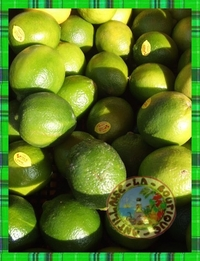 fruit vert exotique